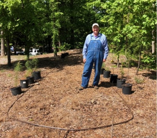 All Saints', Concord: Growing Native Tree Saplings - A New Creation Care Ministry