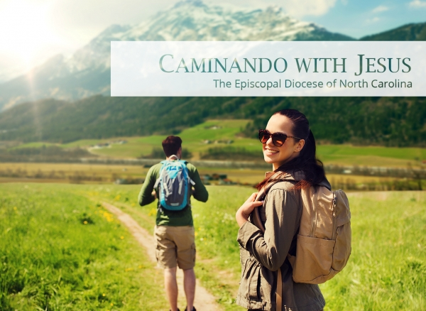CAMINANDO WITH JESUS: Learn from Me, that I am Patient and Humble of Heart